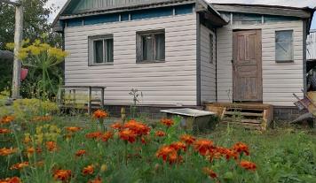 Дача, Вологда