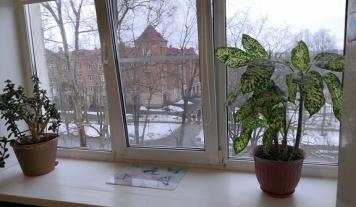 Комната, Вологда, улица Гагарина, д. 37